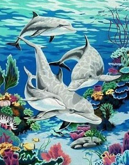 Dolphins Family Painting by Numbers