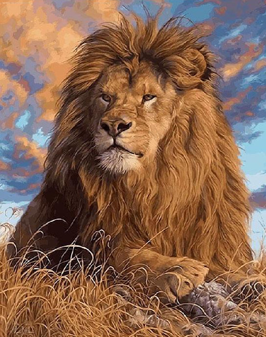 Lion Paint by Numbers Kit