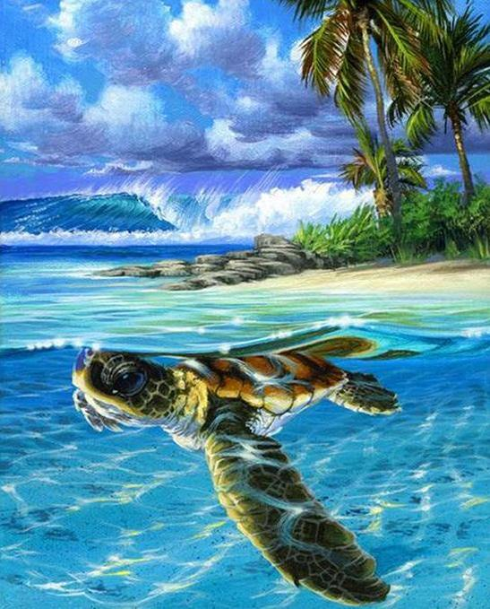 Turtle in the Sea Paint by Numbers