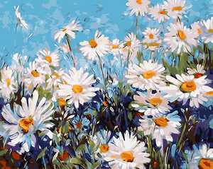 White Daisies Paint by Numbers