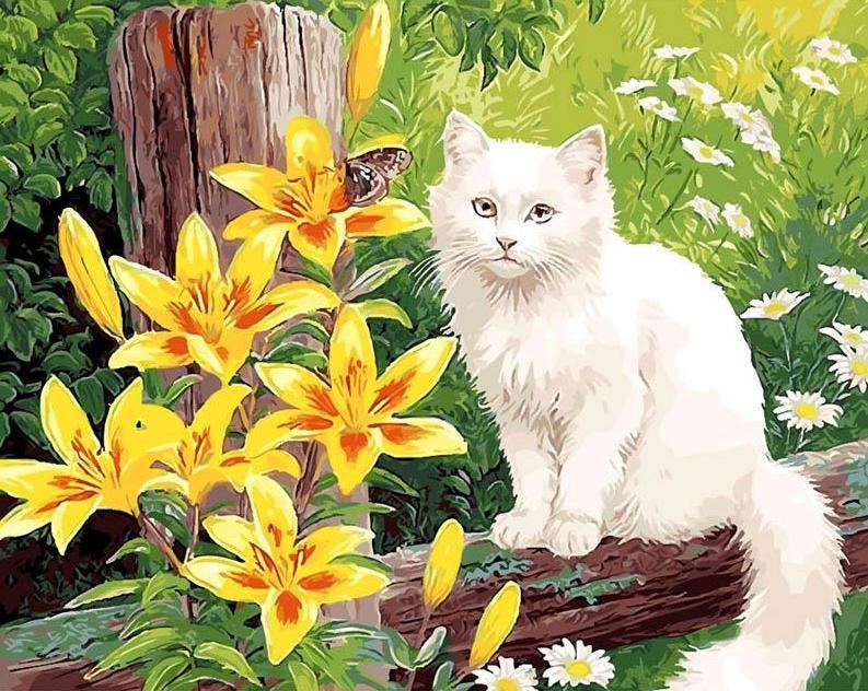 Cat & Yellow Flowers Paint by Numbers