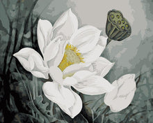 Load image into Gallery viewer, White Floral Art Paint by Numbers