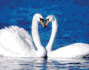 White Swans Paint by Numbers