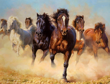 Load image into Gallery viewer, Wild Horses Paint by Numbers