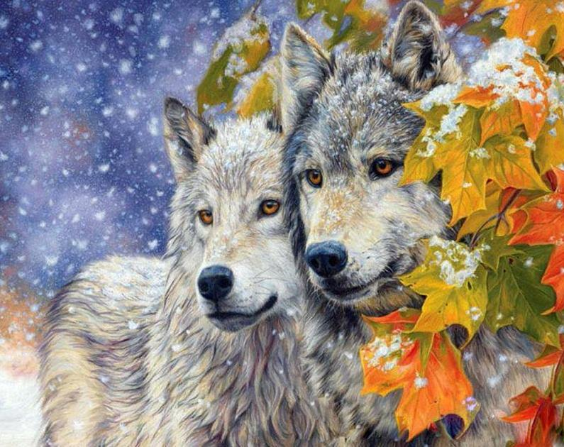 Winter Wolves Paint by Numbers