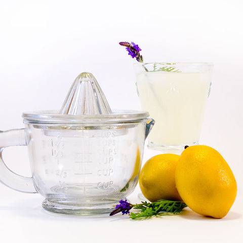Vintage Glass Juicer with Measuring Cup http://www.napavalleyhomeandgarden.com/products/little-bird