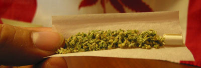 How To Roll A Joint - Image 4 - Toronto Hemp Company THC