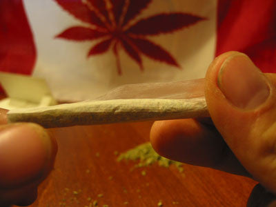 How To Roll A Joint - Image 8 - Toronto Hemp Company THC