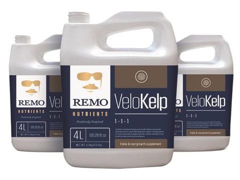 Remo Nutrients & Additives - Remo's VeloKelp 10L
