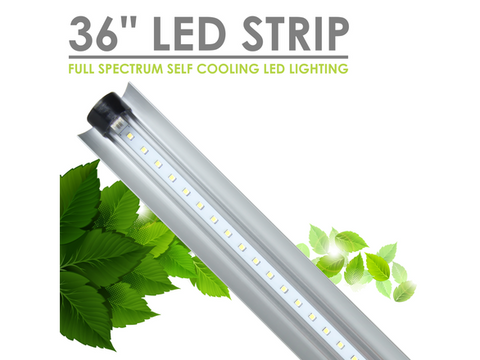 "SunBlaster LED Strip Plant Grow Lighting - 36"" 36Watt 6400K (Vegetative / Grow)"