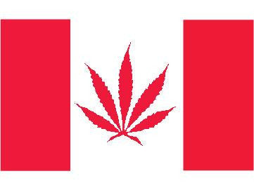 SWAG Sticker - Canada Flag (Pot Leaf Flag)