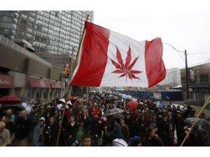 Cannadabis Canada Cannabis Flag Marijuana Hemp Pot Leaf Flag 2356