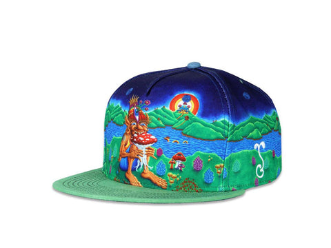 Grassroots California Hat - SnapBack Chris Dyer Muncher of Mushroomland Multi Choice of Sizes
