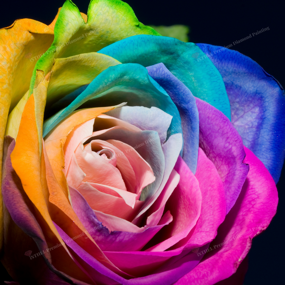 Rainbow Rose Flower- Diamond Painting Kit