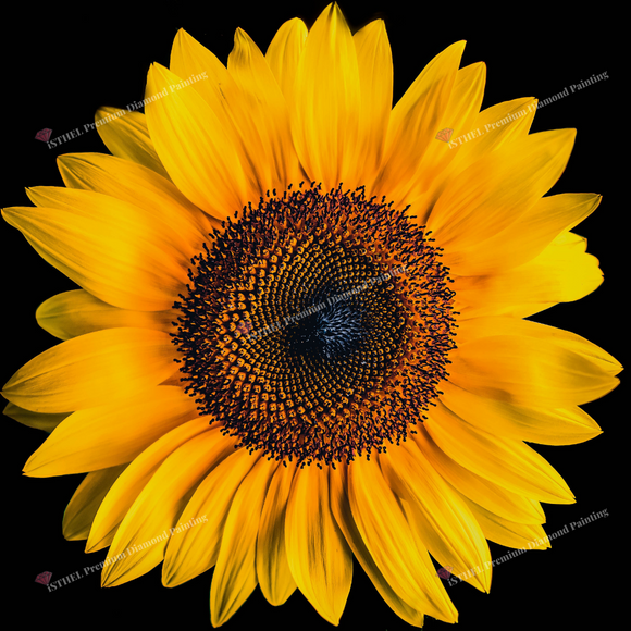 The Sunflower - Diamond Painting Kit with 1 AB