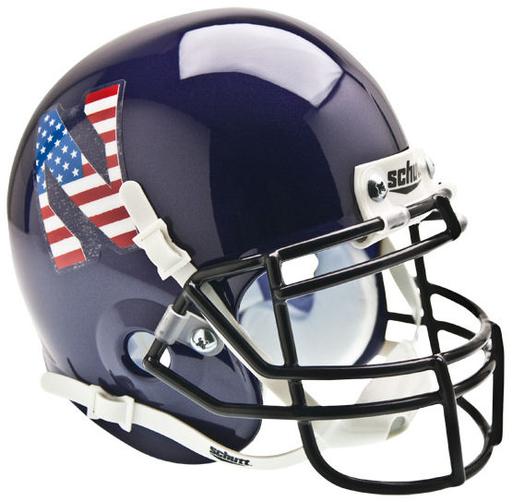 Northwestern Wildcats Schutt XP Mini Helmet - Flag