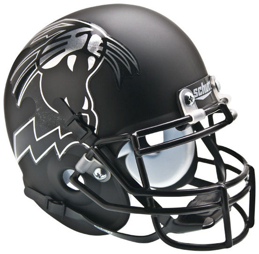 Northwestern Wildcats Schutt XP Riddell Mini Helmet - Matte Black