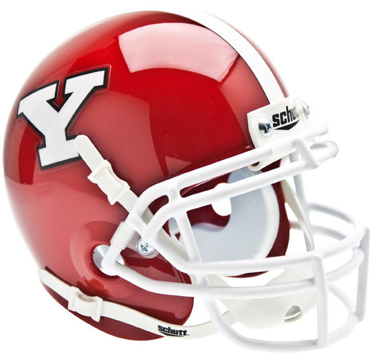 Youngstown State Penguins Schutt XP Mini Helmet