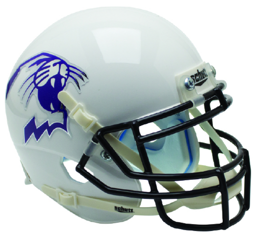 Northwestern Wildcats Mini Helmet Desk Caddy - White Wildcat