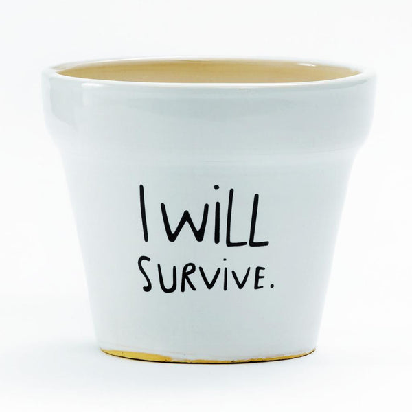 Buy I Will Survive Plant Pot and other gifts online - The Fowndry