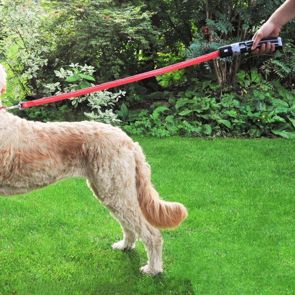 Buy Star Wars Darth Vader Dog Lead and other gifts online - The Fowndry