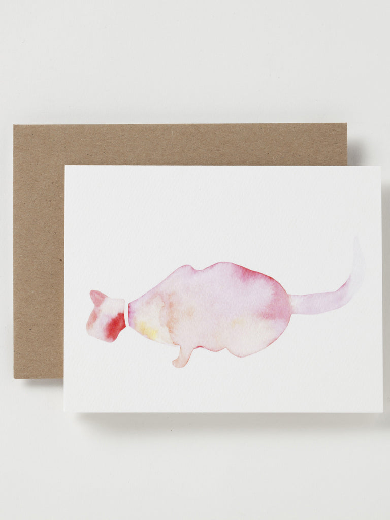 Kitten Cards, set of 5
