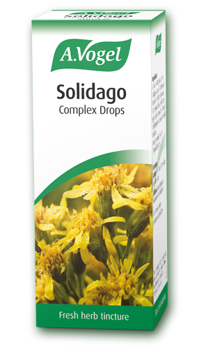 A. Vogel Solidago Complex 50ml