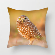 Load image into Gallery viewer, Owl and Bird Cushion Covers for Home Decoration