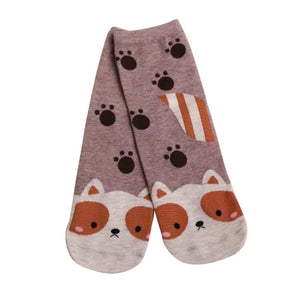 Soft and Cute Women's Beautiful Socks