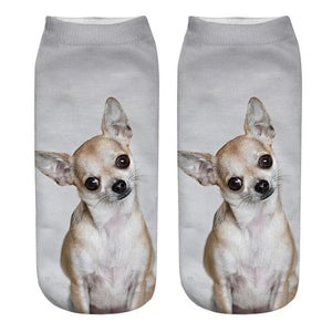 Funny Dog Socks Fabulous and Comfortable for Dog Lovers