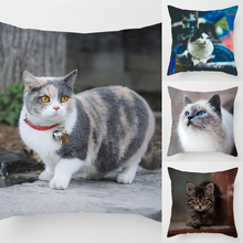 Load image into Gallery viewer, Cute Cats Pillow Cover Cases