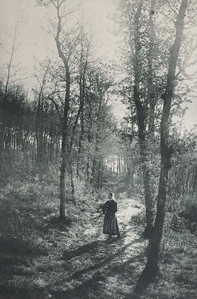 In the Woods by H. de Séverac