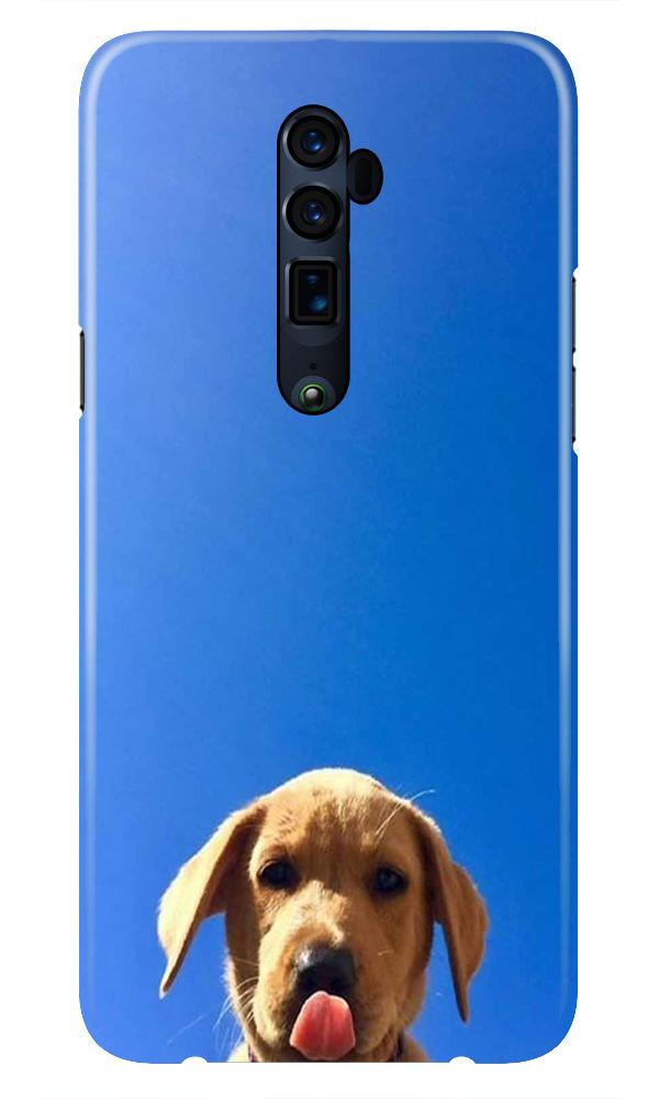 Dog Mobile Back Case for Oppo Reno 10X Zoom  (Design - 332)