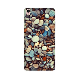 Pebbles Case for Oppo F1 Plus (Design - 205)