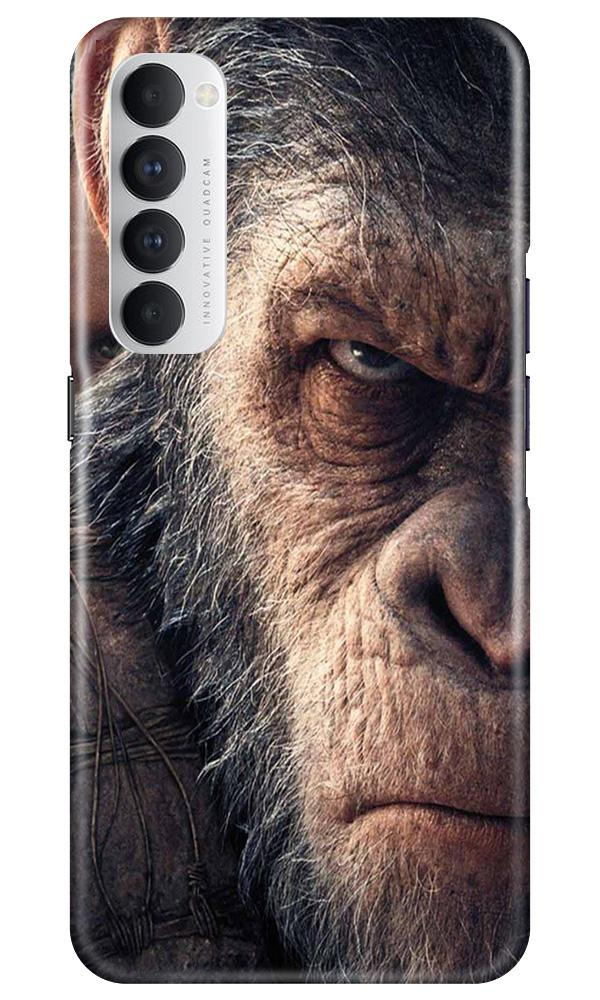 Angry Ape Mobile Back Case for Oppo Reno4 Pro  (Design - 316)