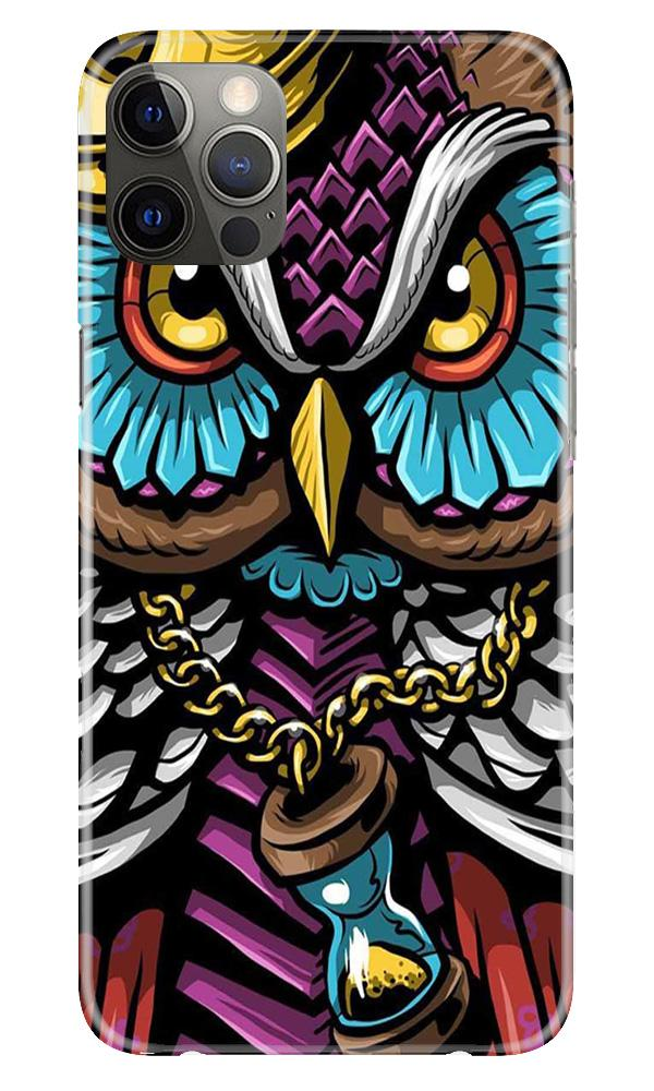 Owl Mobile Back Case for iPhone 12 Pro Max (Design - 359)