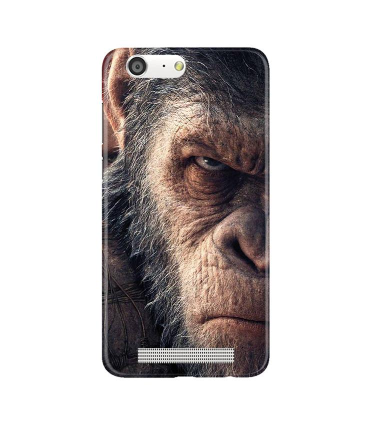 Angry Ape Mobile Back Case for Gionee M5 (Design - 316)