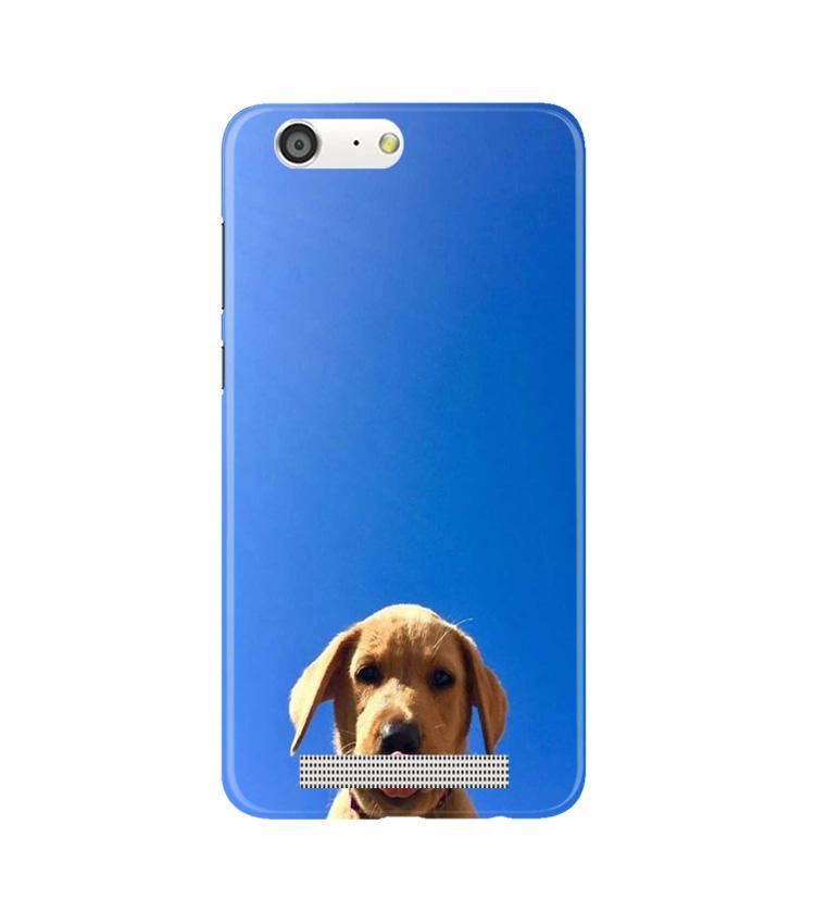Dog Mobile Back Case for Gionee M5 (Design - 332)