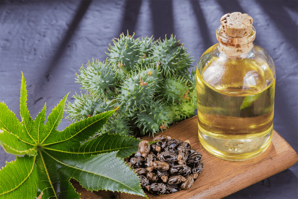 What Exactly is Castor Oil