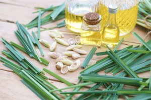 Lemongrass Oil (100% Pure Essential Oil, India) Aromatherapy Grade