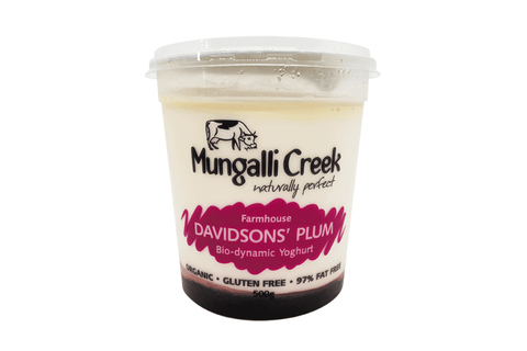 Davidson Plum Yoghurt 500g (Probiotic) Mungalli Creek Biodynamic Farm **REQUIRES 1 BUSINESS DAYS NOTICE**