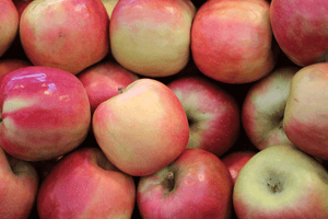 Apples Pink Lady - Australian Grown, Organic (avg weight 100g each) **REQUIRES ONE DAYS BUSINESS DAYS NOTICE**