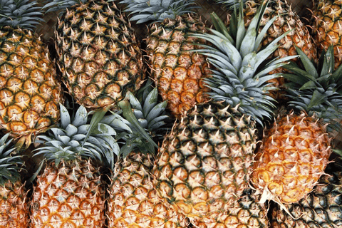 Pineapple, Australian Grown, Certified Organic **REQUIRES 1 DAYS BUSINESS NOTICE**