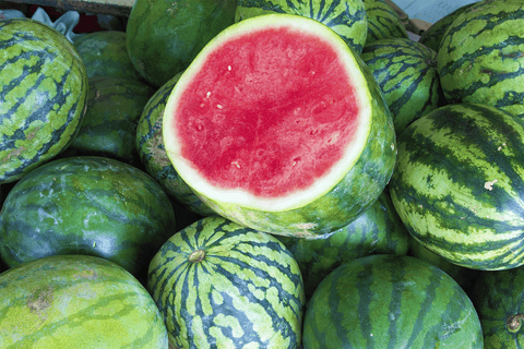 Watermelon (Seedless) Australian Organic (4kg) **PRE-ORDER REQUIRES 1 DAYS NOTICE** OUT OF SEASON