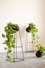 Load image into Gallery viewer, Plant Stands - Pre Order