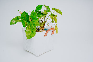 Bayong Planter White (Small to Extra Large)