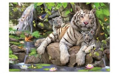 Puzzle 1000pc White Tigers of Bengal