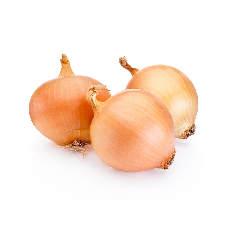 AU Brown Onion x 3 Pcs