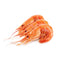Frozen Cooked Prawn [1Kg]