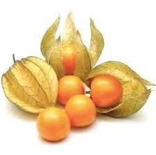 CO Gooseberries [100g]